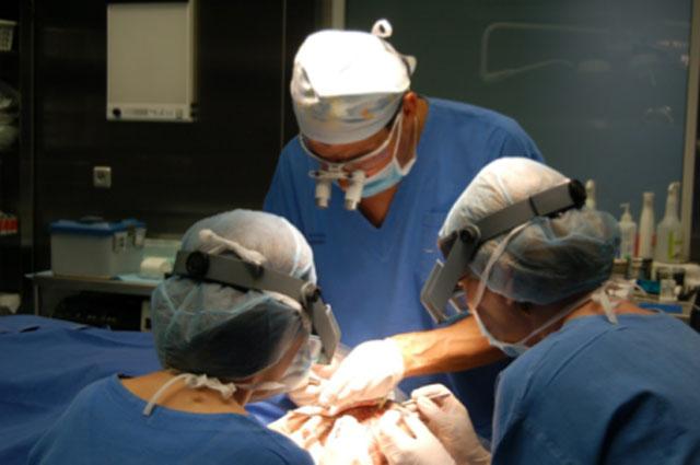 Fot. 5 – Zespół Kliniki Kolasiński podczas zabiegu jednoczasowego pobierania i wkładania przeszczepów