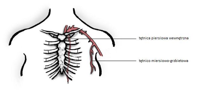 Rekonstrukcja piersi